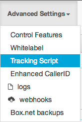 Advanced settings > Tracking script