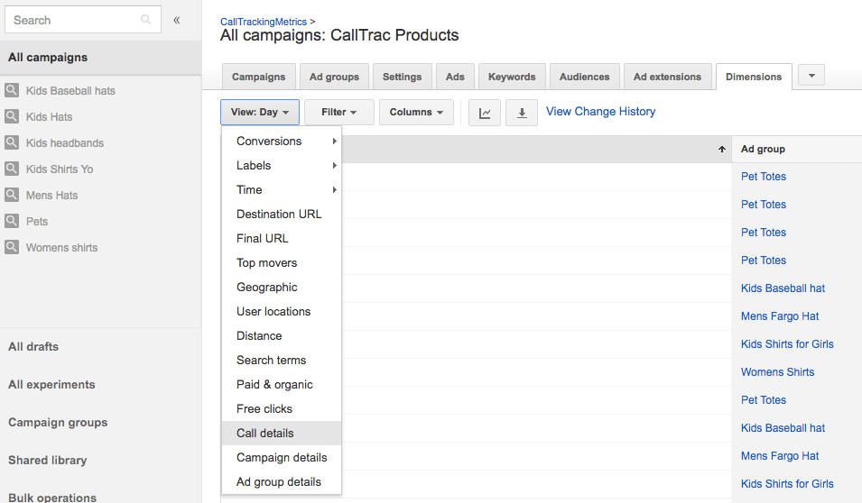 Inside of Google AdWords dimensions and view