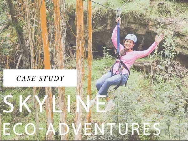 Case Study: Skyline Eco-Adventures